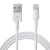 Cáp iPhone iPad Lightning